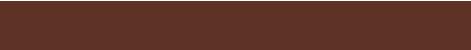 Die Schokoladenfabrik